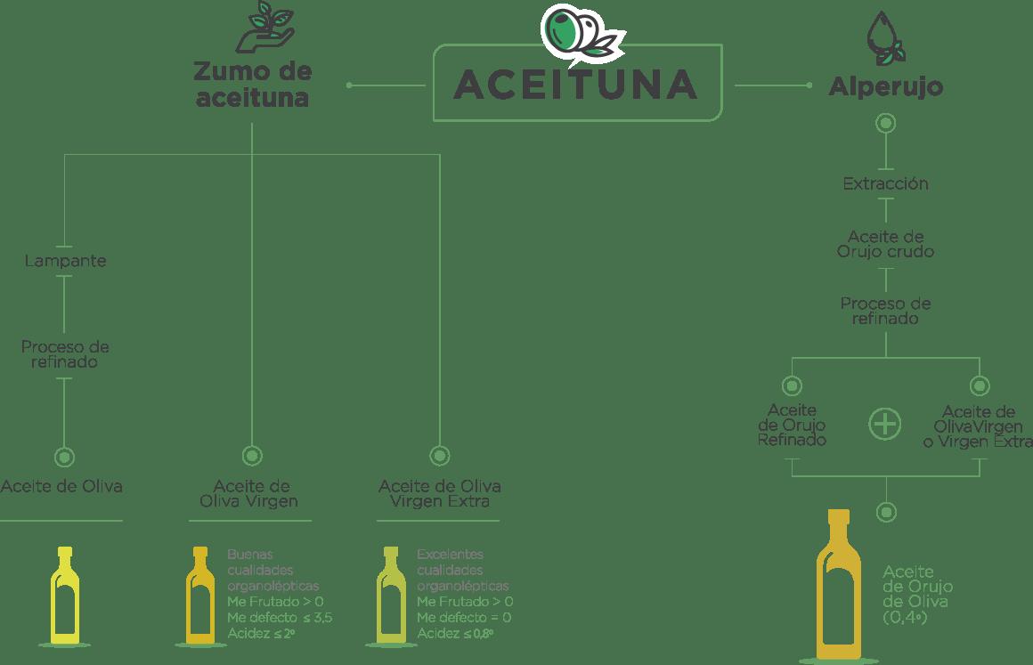 ciclo-produccion-aceite-orujo