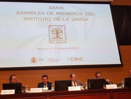"""""""La apuesta por la investigación es un respaldo fundamental para impulsar el Aceite de Orujo de Oliva"""""""